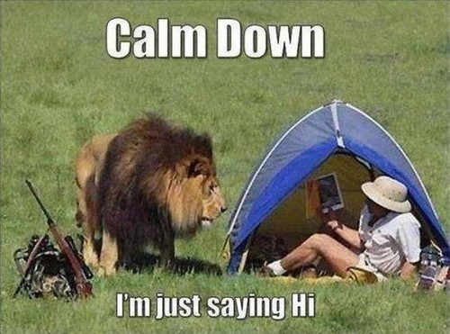 Calm Down .... I'm just saying HI!