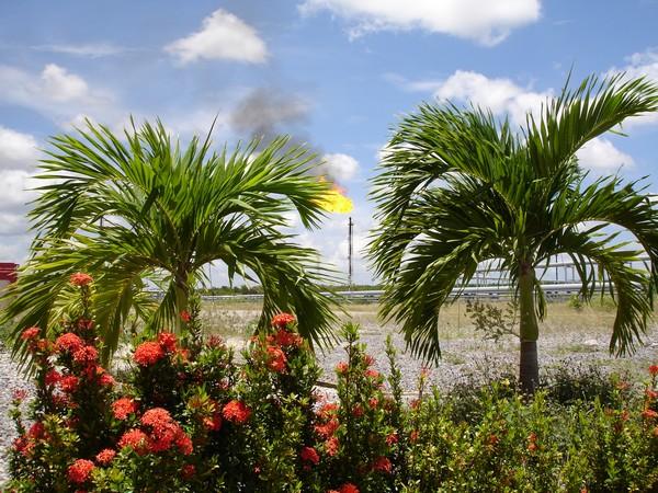 Petroleum field in Venezuela