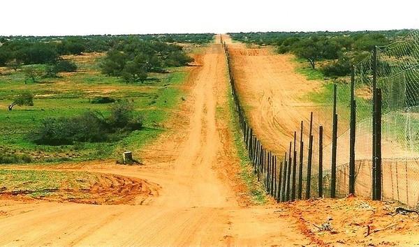 World's Longest Fence