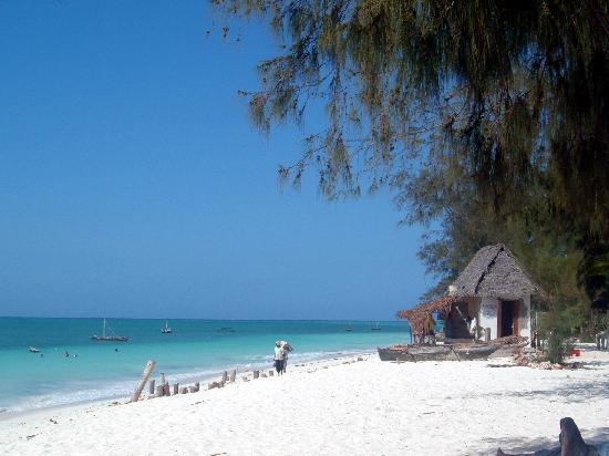 Nungwi Zanzibar Tanzania