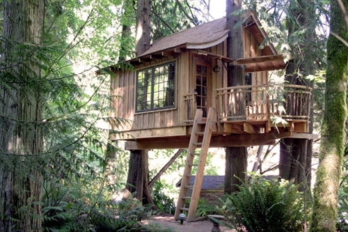 Top 10 Spectacular Tree Houses In The World Amazing