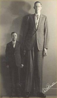 Top 10 Tallest Men in The World (Living or Dead) - Wonderslist