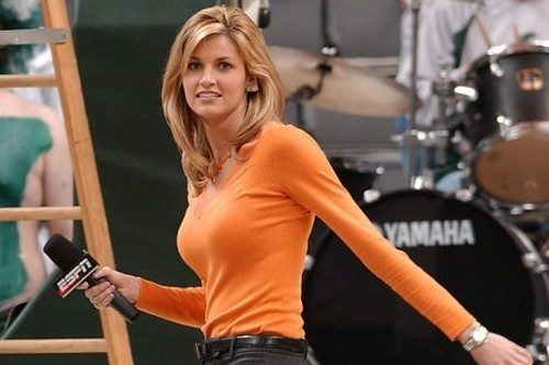 Erin Andrews Top 10 Hottest TV Babes