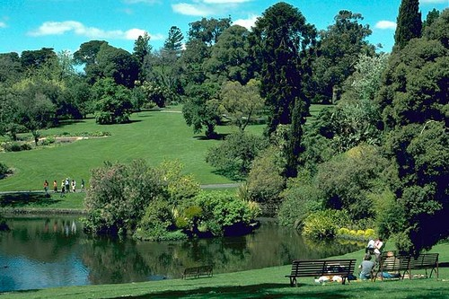 Royal Botanic Gardens, Melbourne Part 96