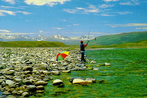 Deosai Plateau - The land of Giants