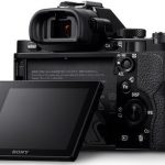10 Important Facts about Mirrorless System Cameras