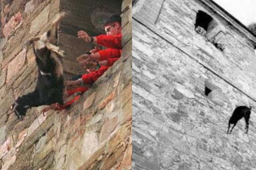 Europeans Torture Animals as a Tradition