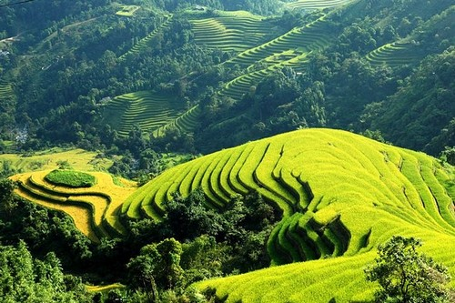 Sapa Magical Places in Asia