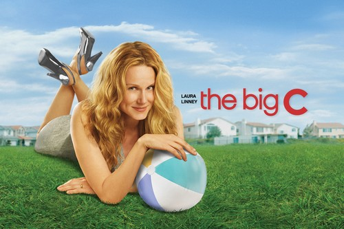 Big C-Best Fiction TV Series