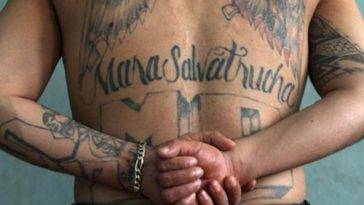 Mara Salvatrucha (MS-13)