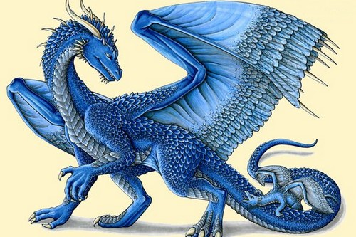 Saphira Popular Dragons