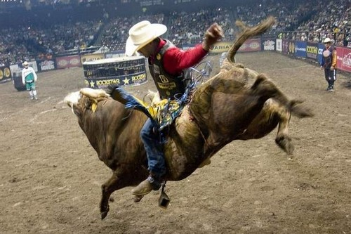 Bull riding full of thrills