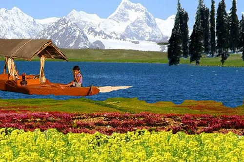 Honeymoon in Jammu and Kashmir