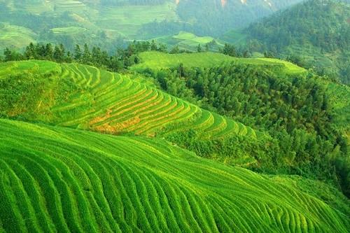 Mountains of Southwest China