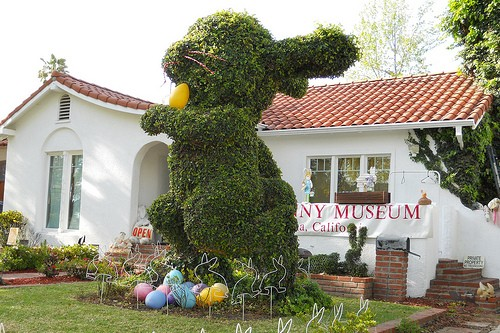10 Strangest Museums