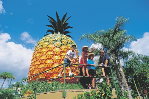 Big Pineapple in Australia