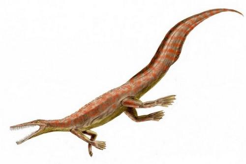 Mesosaurus Weird Prehistoric Creatures