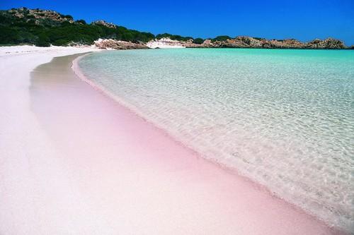Spiaggia Rosa Of Budelli Sardinia Italy Pink Beach In