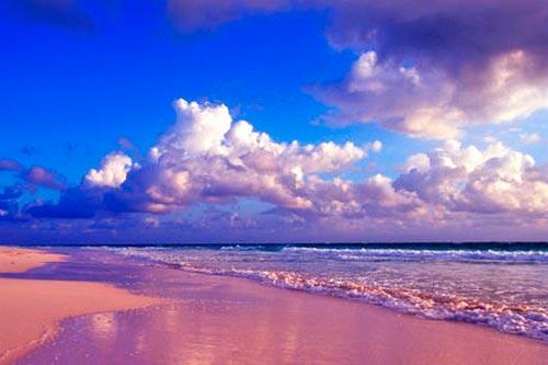 Pink Beaches of Great Santa Cruz Island