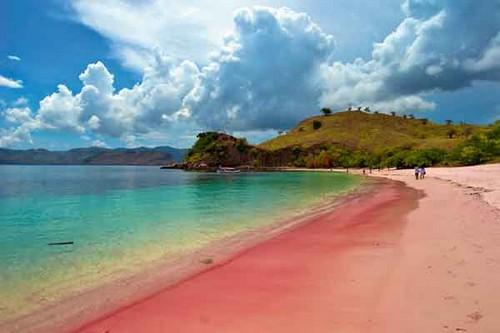 Pink Beaches of Komodo – Indonesia