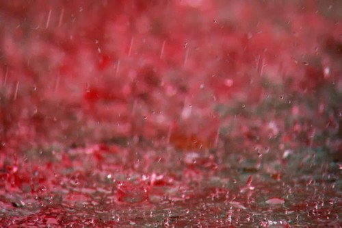 Red Rain In Kerala Unsolved Mysteries