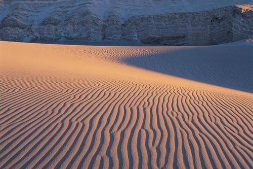 Best Sandboarding Destinations in Chile
