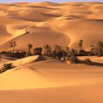 10 Wonderful Oases That Will Make You Love The Desert