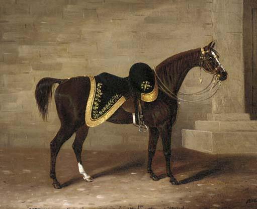 Copenhagen ( Famous War Horses )