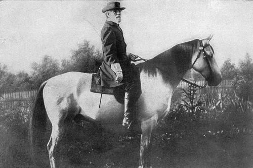 Traveller Famous War Horses