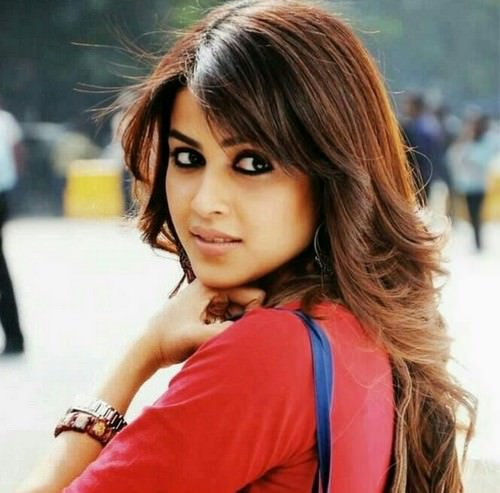 Genelia D'Souza Hot South Actress