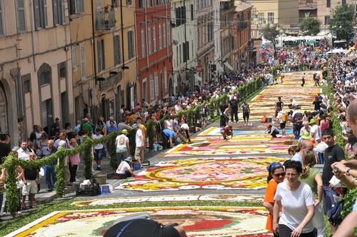 Genzano Infiorata Flower Festivals