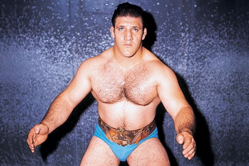 Bruno Sammartino Greatest Wrestlers