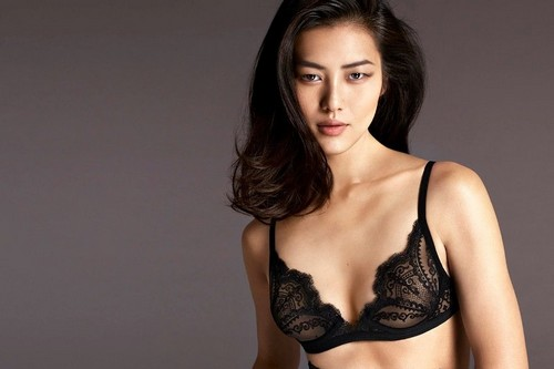 Highest Paid Model Liu Wen