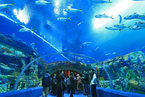Aquarium of Western Australia, Perth