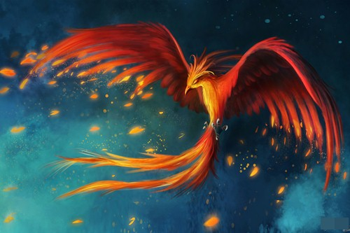 phoenix colorful bird