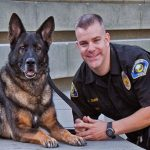 10 Best Police Dog Breeds In The World