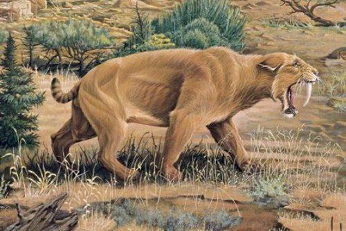Extinct Animal Species