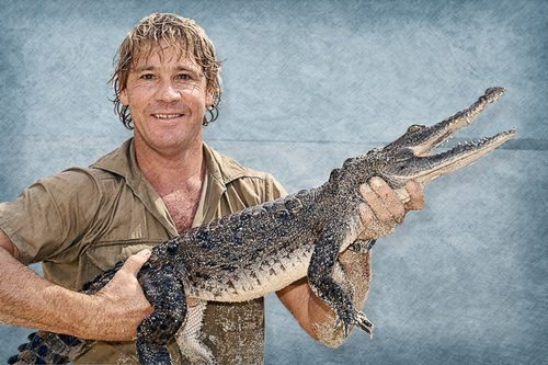Steve Irwin Disturbing Animal Attacks