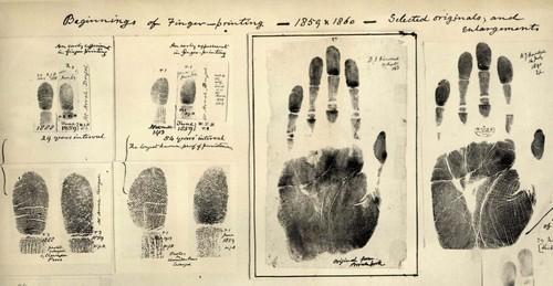 International Historical Murder Mysteries
