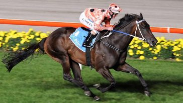 Black Caviar Best Race Horses
