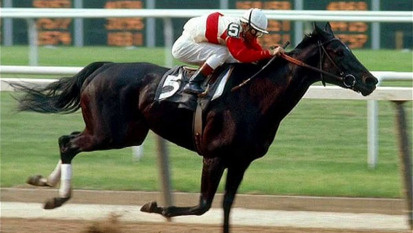 Ruffian Best Race Horses