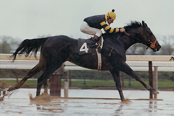Seattle Slew Best Race Horses