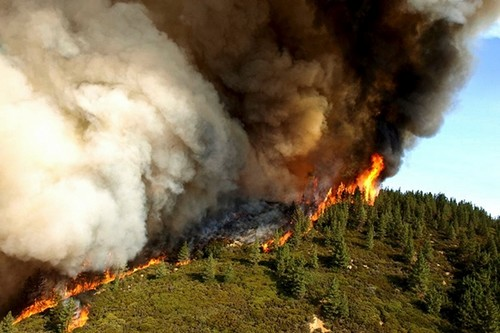Largest Wildfire In California History