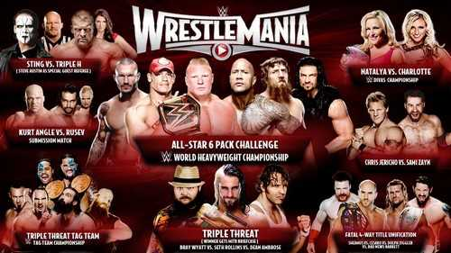 WWE WrestleMania 31 Economic Impact