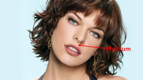 Milla Jovovich Beautiful face