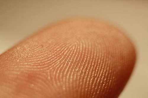 The History of Fingerprints