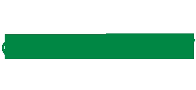 who is imam mahdi