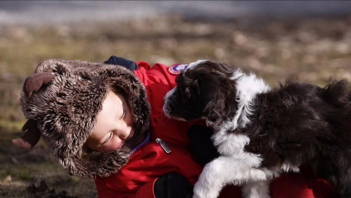 Justin Trudeau's Dog Kenzie