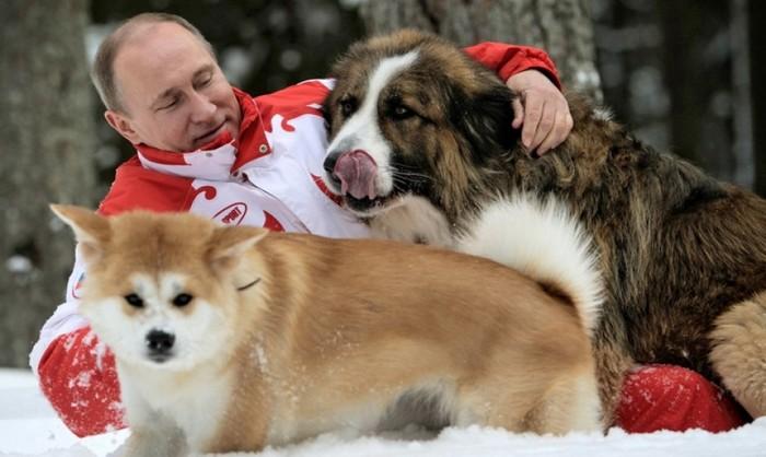 Russian President Vladimir Putin Pets