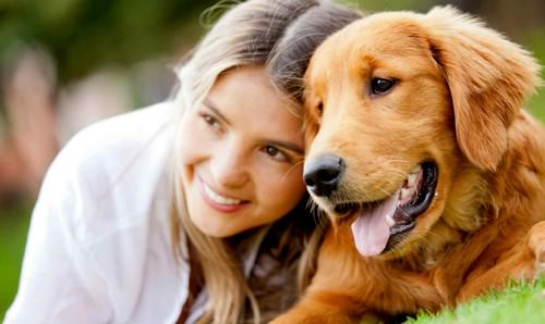 Owning a Dog Is Linked to Reduced Heart Risk